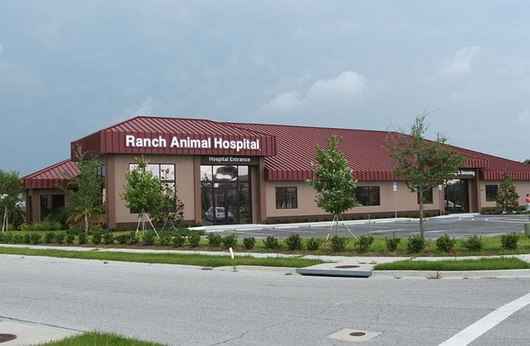 ranch-animal-hospital-01